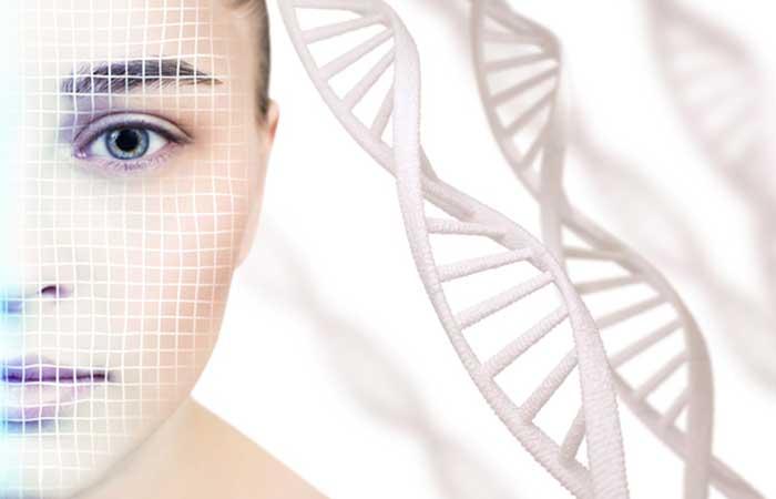 女性の肌とサーチュイン遺伝子