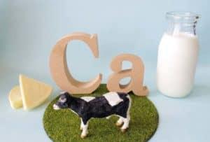 カルシウムをイメージした牛・牛乳・チーズ