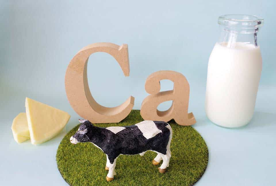 カルシウムの働きとカルシウムが豊富な食品