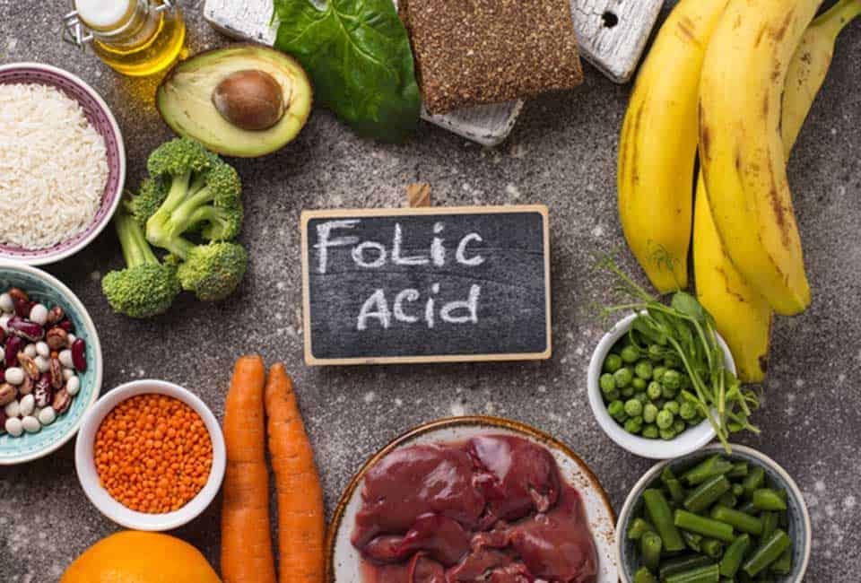 葉酸の豊富な食品